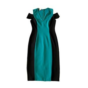 Maggy London Two Toned Hourglass Dress